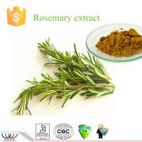 China Rosmarinus Officinalis Natural Herbal Extracts , Pure Natural Plant Extracts Brown Yellow Color on sale