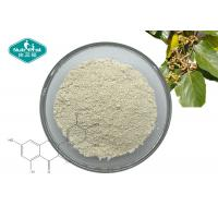 Cheap Vine Tea Extract Natural Botanical Extracts 98% Dihydromyricetin DHM For Liver Protection for sale