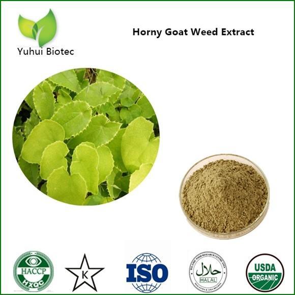 Quality Horny Goat Weed Extract,icariin 40%,icariin 50% 60% 80% 98%,epimedium extract wholesale