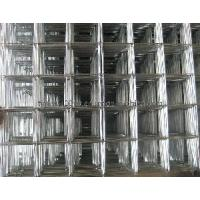 Cheap Welded Wire Mesh (TYA-40) for sale