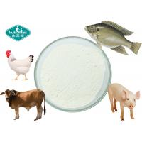 Cheap 90% Protein Daily Nutritional Supplement Collagen Powder From Porcine Chicken Fish for sale