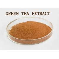 China Brown Natural Supplement Raw Materials Polyphenols Green Tea Extract Powder on sale