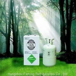 Cheap Refrigerant Gas (R142B) for sale