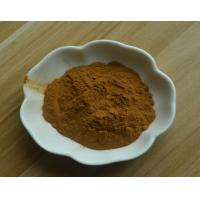 Cheap 100% Natural 0.35% Isofraxidin HPLC/Sarcandra Glabra Extract powder for sale