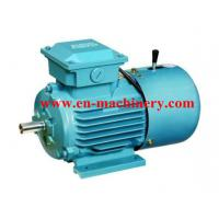 Cheap Single Phase Electric Motor, AC Electric Motor and Geared Motor,Small AC Motor for sale
