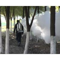 Cheap Knapsack sprayer outdoor pesticide thermal fogger (five year engine guarantee) for sale