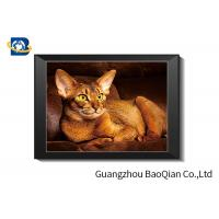 Cheap Cute Cat Lenticular Printing Picture With Frame 40 x 40 cm PET 0.65 mm for sale