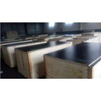 Cheap film faced plywood,exterior plywood,plywood for concrete forming,plywood sheet,plywood price,hardwood plywood for sale