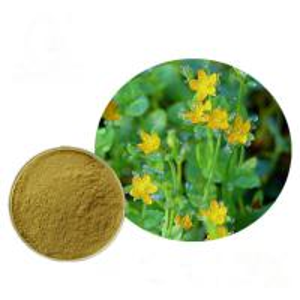 China Free sample supply Hypericin Perforatum Extract, Hypericum Extract Hypericin for Depression on sale