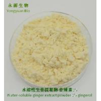 China Ginger Extract Powder, water soluble Ginger Powder, Gingerol raw material, manufacturer, food, cosmetics, drinks on sale