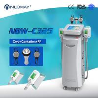 Buy cheap Cryolipolysis machine belly fat removal machine from wholesalers