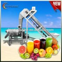 Cheap Easy to operate high capacity mango juicer for sale