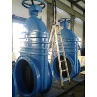 Buy cheap Iron coating EPDM or NBR Resilient seated Gate Valve PN16 600mm from wholesalers