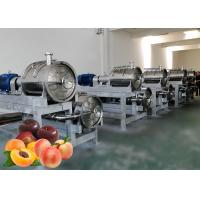 China Industrial Food Standard Apple Processing Line Large Capacity Water Saving on sale