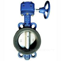 Cheap DN100,PN10 wafter type Plastic butterfly valve with worm gearbox for sale