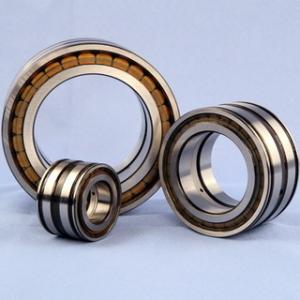 Cheap Full Roller Beraings Sheave Bearing SL045005 (NNF5005) for sale