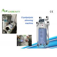 Cheap Vertical Salon use color touch screen Cryolipolysis body slimming machine with CE for sale