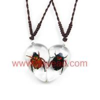 Cheap real insect amber Valentine pair necklace,Fashional Jewelry for sale