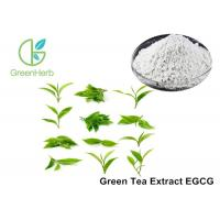 Cheap EGCG Green Tea Extract Anti - Tumor Effect For Pharmaceutical Industries for sale