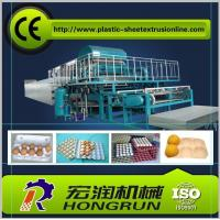 Cheap 4000pcs/hr Pulp Moulding Egg Tray Machine ,  Fully Automatic Egg Tray Machine for sale