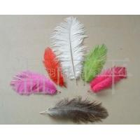Cheap ostrich feather, plumage, marabou, boas, strung, fringes/trims, duster for sale