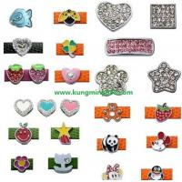 Cheap Rhinestone Slider Charms,Enamel Charms,PET Charms DIY Charms for sale