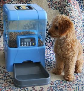 Cheap Auto Dog Feeder (PFD03-A1) for sale