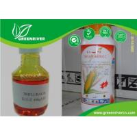 China Acetochlor Select Herbicide 34256-82-1 , Pre Emergent Herbicides IN Yellow liquid on sale