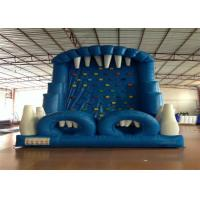 Cheap Blue Rock Climbing Bounce House 6 X 4m , Commercial Inflatable Ladder Climb for sale