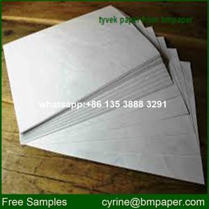 Cheap Tyvek Flat Roll/Tyvek Coated Paper for sale