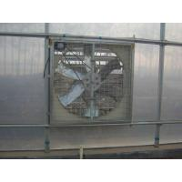 Cheap Cooling Fan For Chicken House for sale