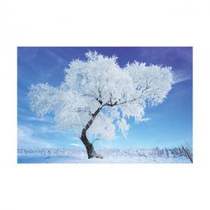 Cheap 0.6mm PET 40*60cm 3D Lenticular Poster / 3D Depth Effect Lenticular Landscape Poster for sale
