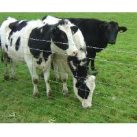 Cheap Live Stock Fence for sale