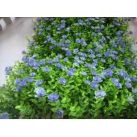 Uvg Hgr02 New Style Artificial Boxwood Panel With Plastic