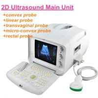 Human Portable Ultrasound Scanner with 18-month warranty/CE Ultrasonic with factory support/USG echo device/Sonography