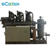 Cheap Low Noise Screw Parallel Refrigeration Compressor Unit For Cold Storage Refrigeration for sale