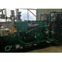 Cheap 200kW 250kVA AVL Technology Engine Biogas Electric Generator With ISO for sale