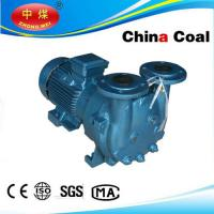 China 2BV5121 Single Stage Water Ring Vacuum Pump on sale