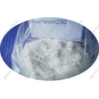 Cheap Injectable Raw Steroid Powders Testosterone Sustanon 250 for Male Muscle Building for sale