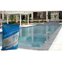 Swimming Pool Waterproofing Slurry With Concrete Polymer Safety Of Ceramictileadhesive