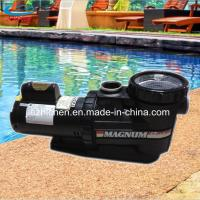Swimming Pool Filter Pumps Swimming Pool Filter Pumps For Sale