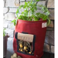 Cheap hot selling grow bag,you will love gardening job,happy life will be shared with your family for sale
