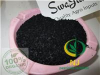 Cheap NJ Organic fertilizer|seaweed extract fertilizer | black flakes /powder|25% alginic acid seaweed fertiliser for sale
