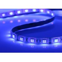 Cheap Waterproof RGB SMD 5050 LED Strip Light High Brightness CE / RoHs for sale