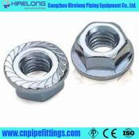 Cheap stainless steel hex flange nuts for sale