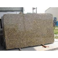 Cheap Giallo Forito Granite Slab/ Tile/ Wall Tile for sale