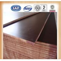 Buy cheap GIGA 1220*2440mm custom plywood sizes from wholesalers