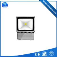 100W 50000hrs Long Lifespan LED Penguin Type  Flood Lighting For Stadium