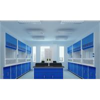 China All Steel Structure 6 Feet Wide Integrated Design Standard Type Laboratory Fume Hood Lab Furniture Manucturer on sale