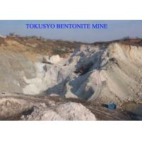 Cheap Geological Engineering Bentonite For Drilling Fluid Additives 200 / 300 / 700 Mesh for sale